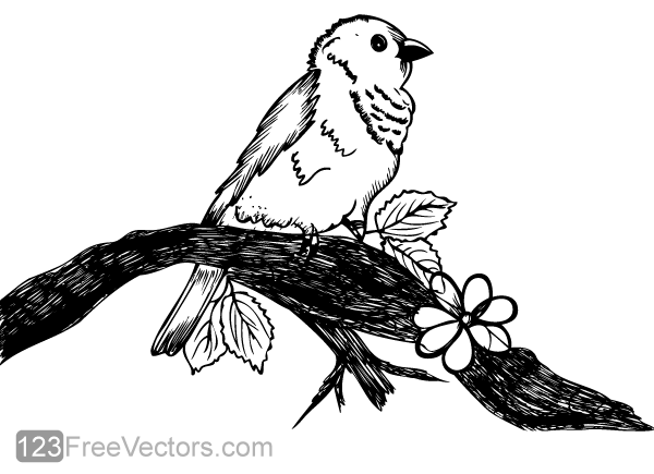 Line Drawing Nest : How to draw birds nest step by pencil sketch youtube