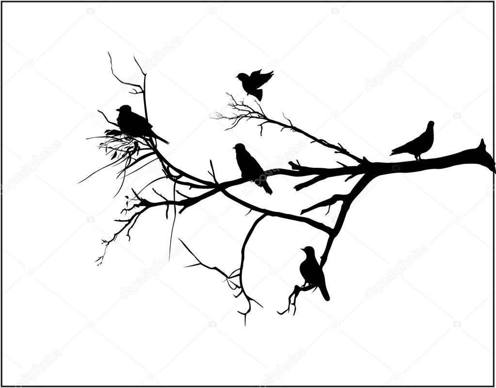 1023x800 Shapes Of Birds Sitting On Tree Branch Stock Vector Baavli