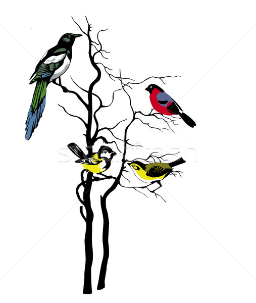 507x600 Vector Silhouette Of The Birds On Tree Illustration