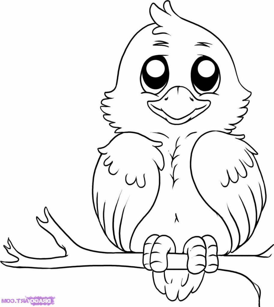 913x1024 Nice Bird Drawing Ideas A Drawing Of A Bird 20 Beautiful Bird