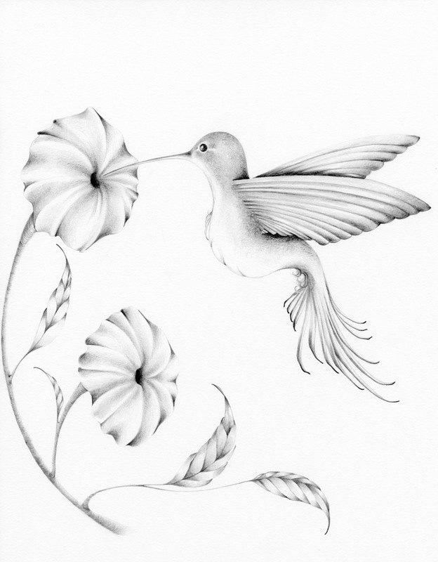 624x800 Bird Art Print Bird Home Decor Drawing A Bird Art Print