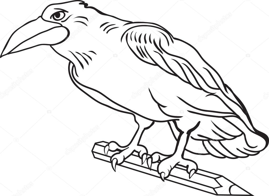 1023x747 Contour Drawing Crow. Bird Holds A Pencil Stock Vector