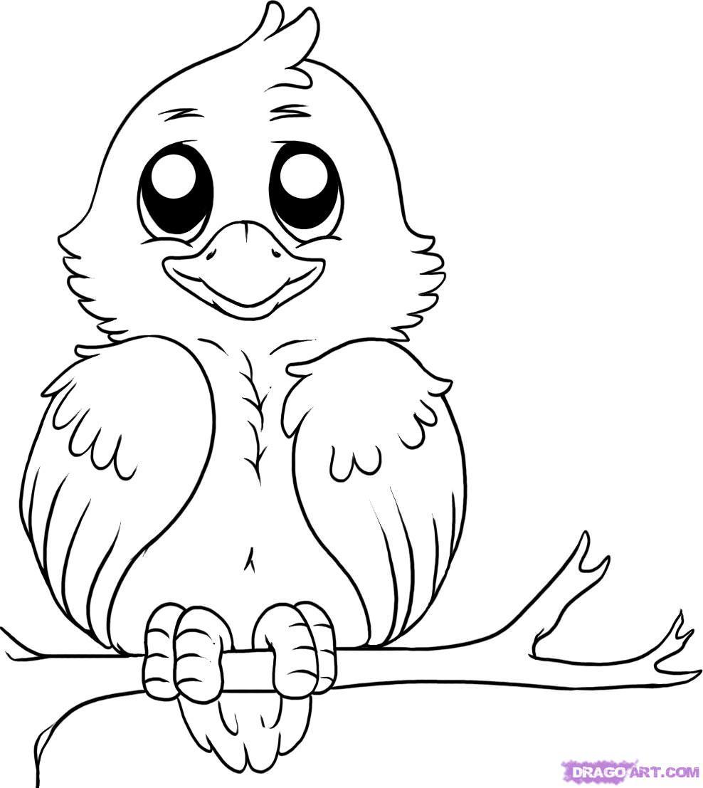 988x1107 Cartoon Bird Drawing Beautiful Bird Pencil Drawings, Art Ideas