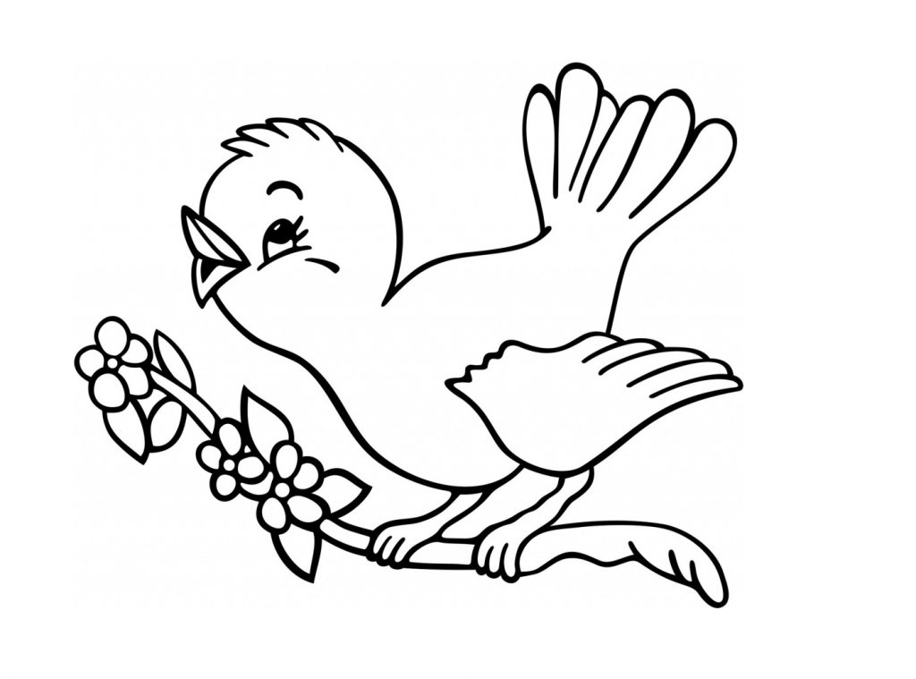 1024x759 Pictures Bird Image Drawing For Kids,