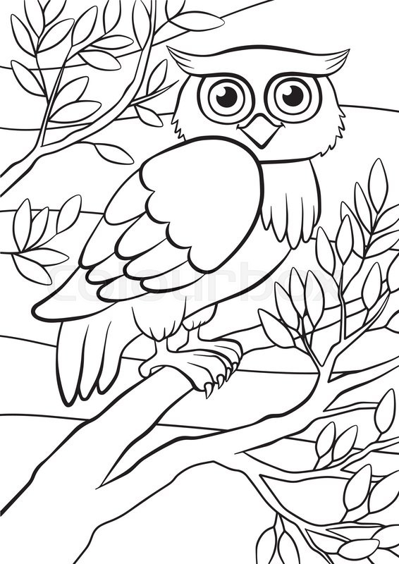 566x800 Cartoon Birds For Kids. Little Cute Owl Sits On The Tree Branch