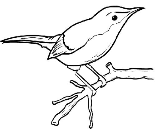 500x414 Little Bird Sitting On A Tree Branch Coloring Page Tree