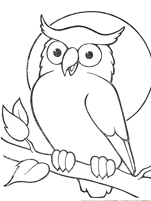 595x793 Outline Owl Sitting On Branch Tattoo Sample Owls!