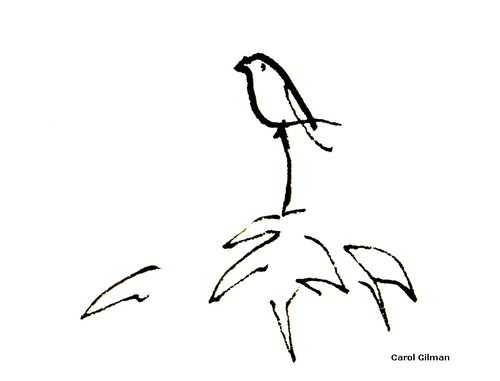 500x381 Sketch Of The Day ~ Petula Sitting On Bird Hotel