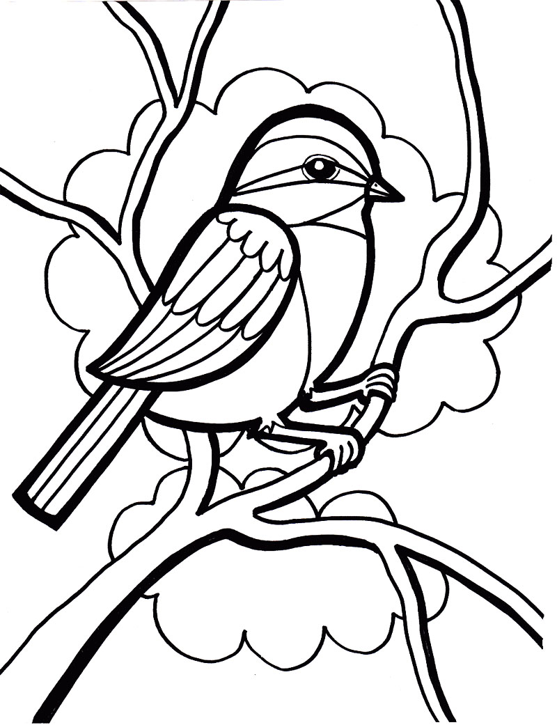 800x1041 Bird Coloring Lesson Coloring Pages For Kids Coloring Lesson
