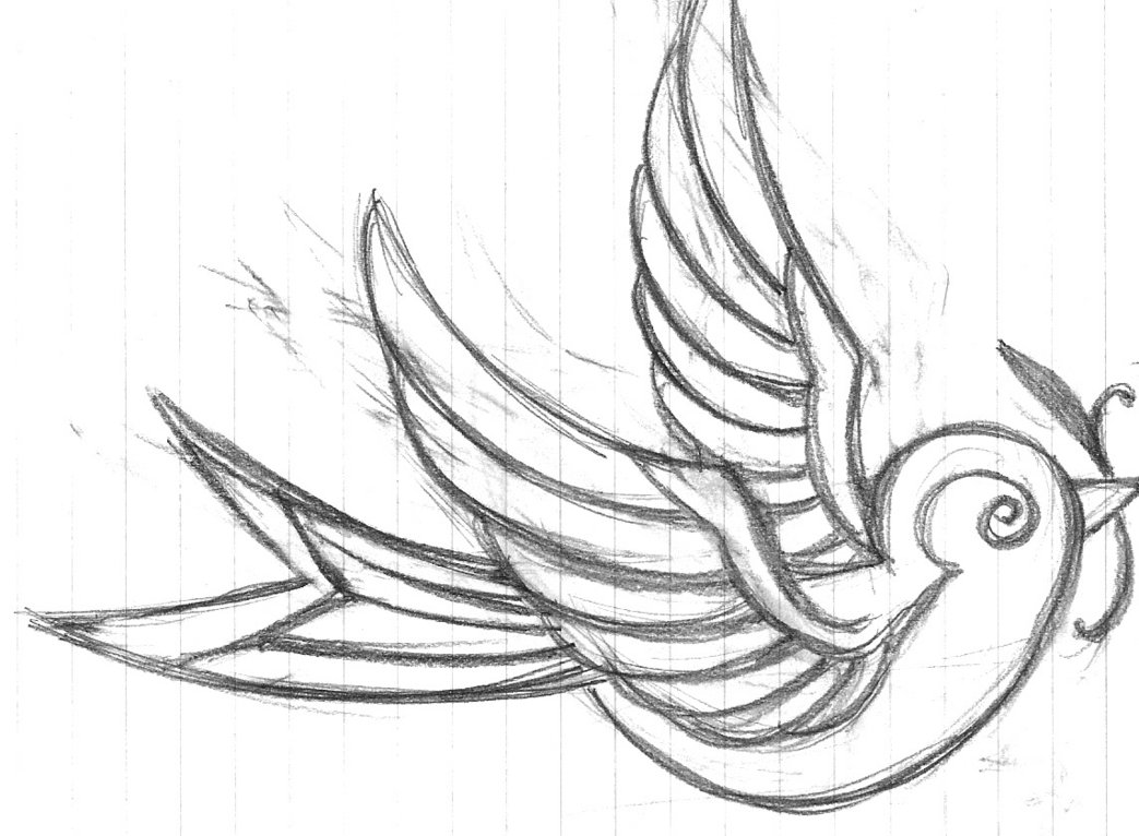 Bird Tattoo Drawing At Getdrawings Com Free For Personal Use Bird