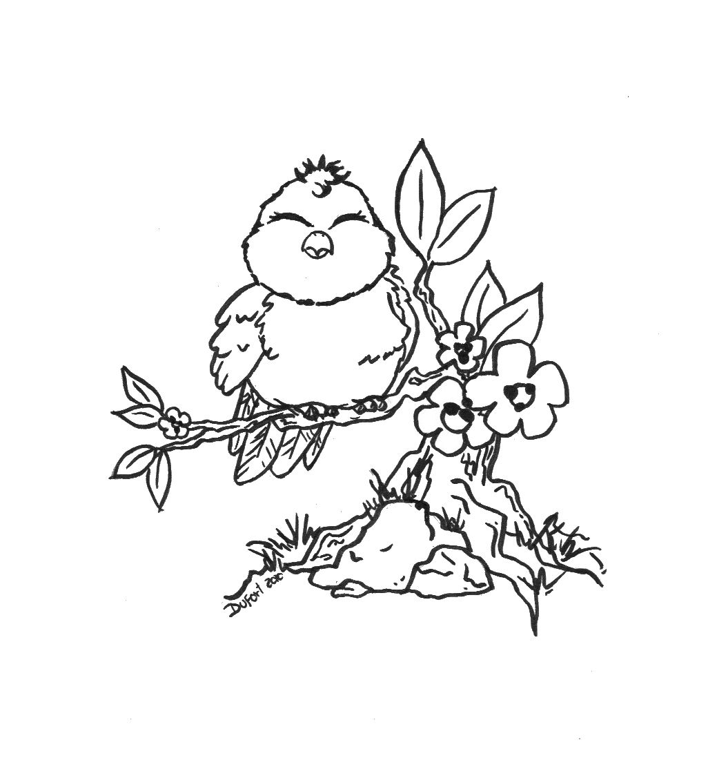 1026x1111 Cute Bird Coloring Pages
