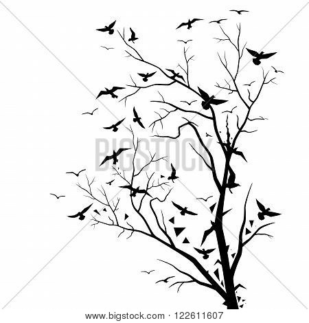 450x470 Dry Tree Flying Air Birds Vector Amp Photo Bigstock