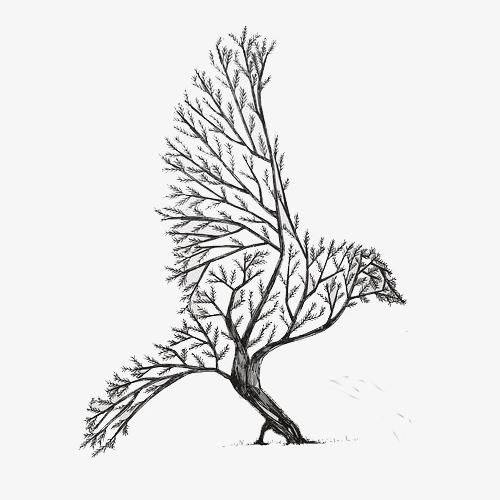 500x500 Bird Tree,hand Painted, Black And White, Flat, Bird Tree Png Image