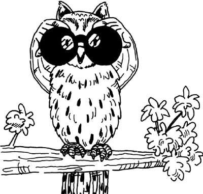 400x381 Owl Eyes Activity Howstuffworks