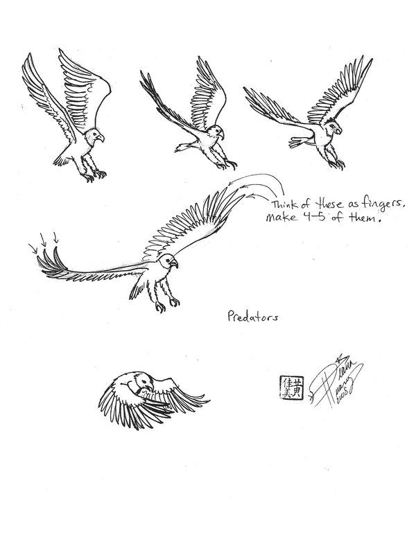 600x778 Draw A Bird Of Prey 2 By Diana Huang