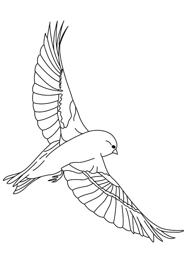 600x842 Find The Best Coloring Pages Resources Here!