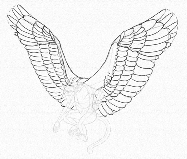 600x510 Fly, My Pretty! How To Draw A Winged Monkey Step By Step