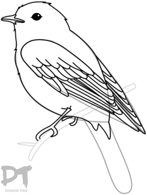 476x631 How To Draw A Bird Drawintime