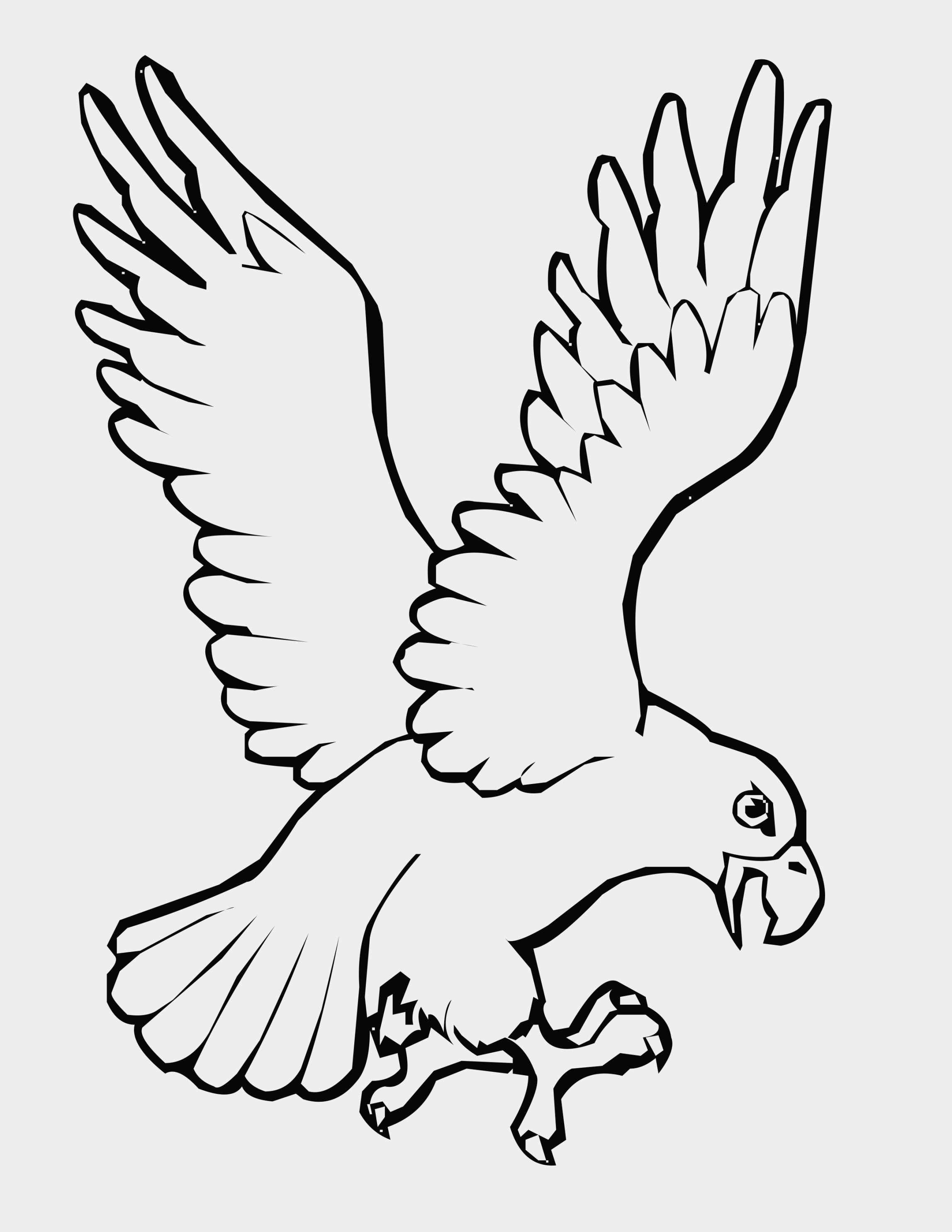 2295x2970 Inspirational Bird Wings Coloring Pages