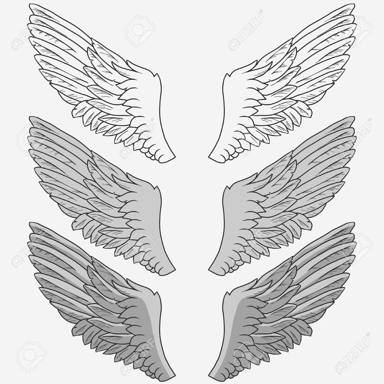 1300x1300 Wings Of Bird Set, Hand Drawn Angel Wing. Vector Royalty Free