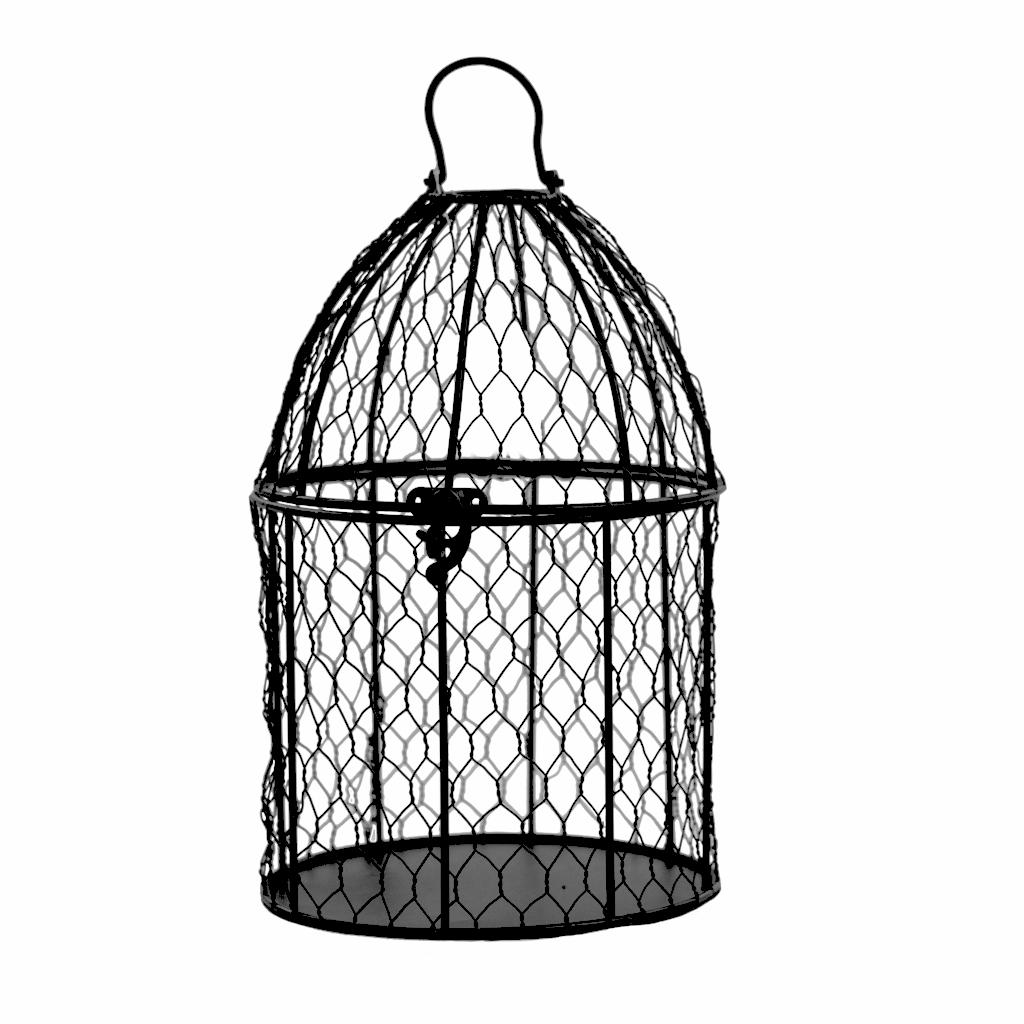 1024x1024 Birdcage (Medium)