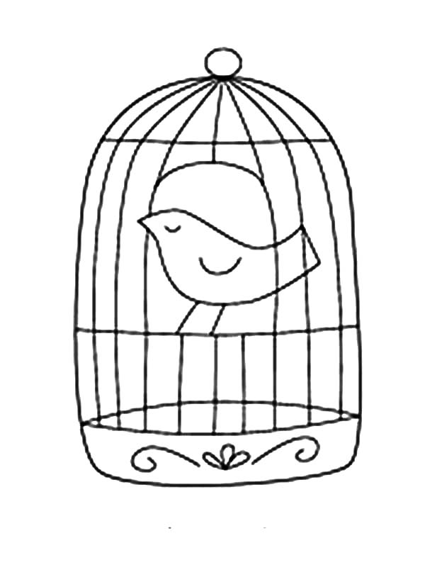 600x828 A Bird In A Cage Drawing