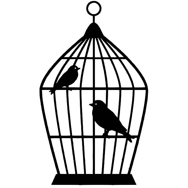 600x600 Drawn Bird Cage Sketch