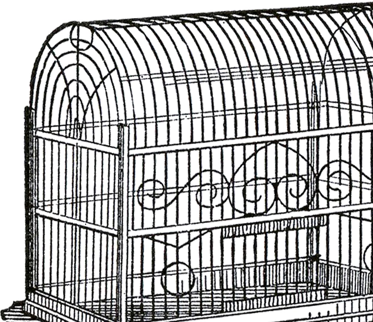 1244x1072 Vintage Bird Cage Image