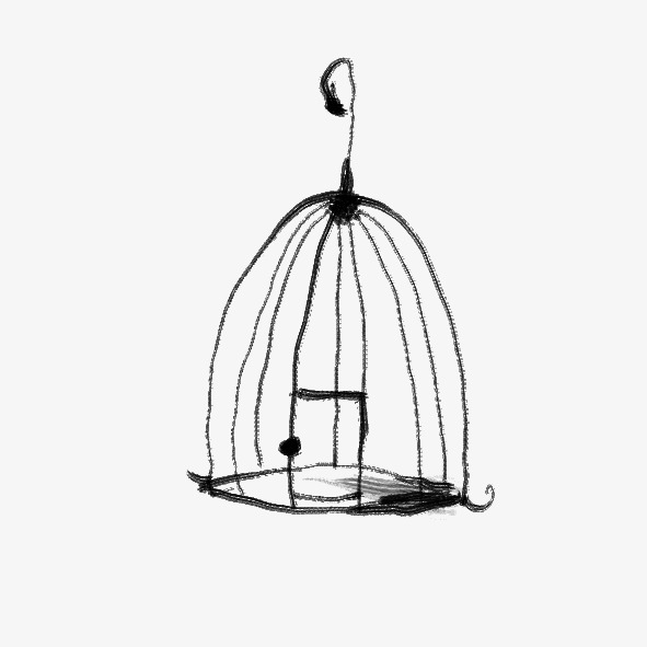591x591 Birdcage, Iron Wire, Iron Png And Psd File For Free Download