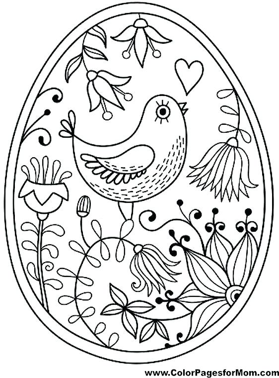 562x760 Bird Coloring Best Bird Coloring Pages Ideas On Bird By Bird Adult