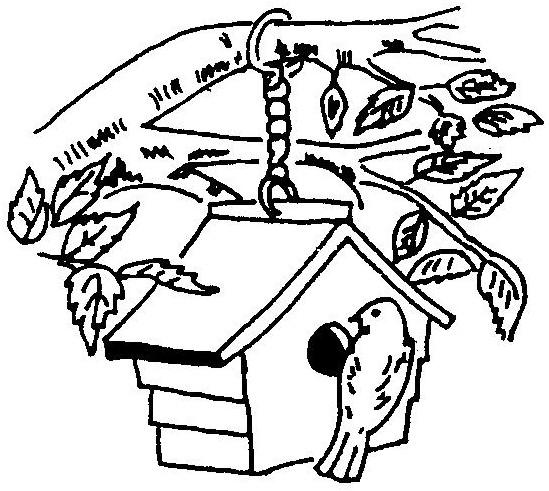 549x491 Bird House Drawing