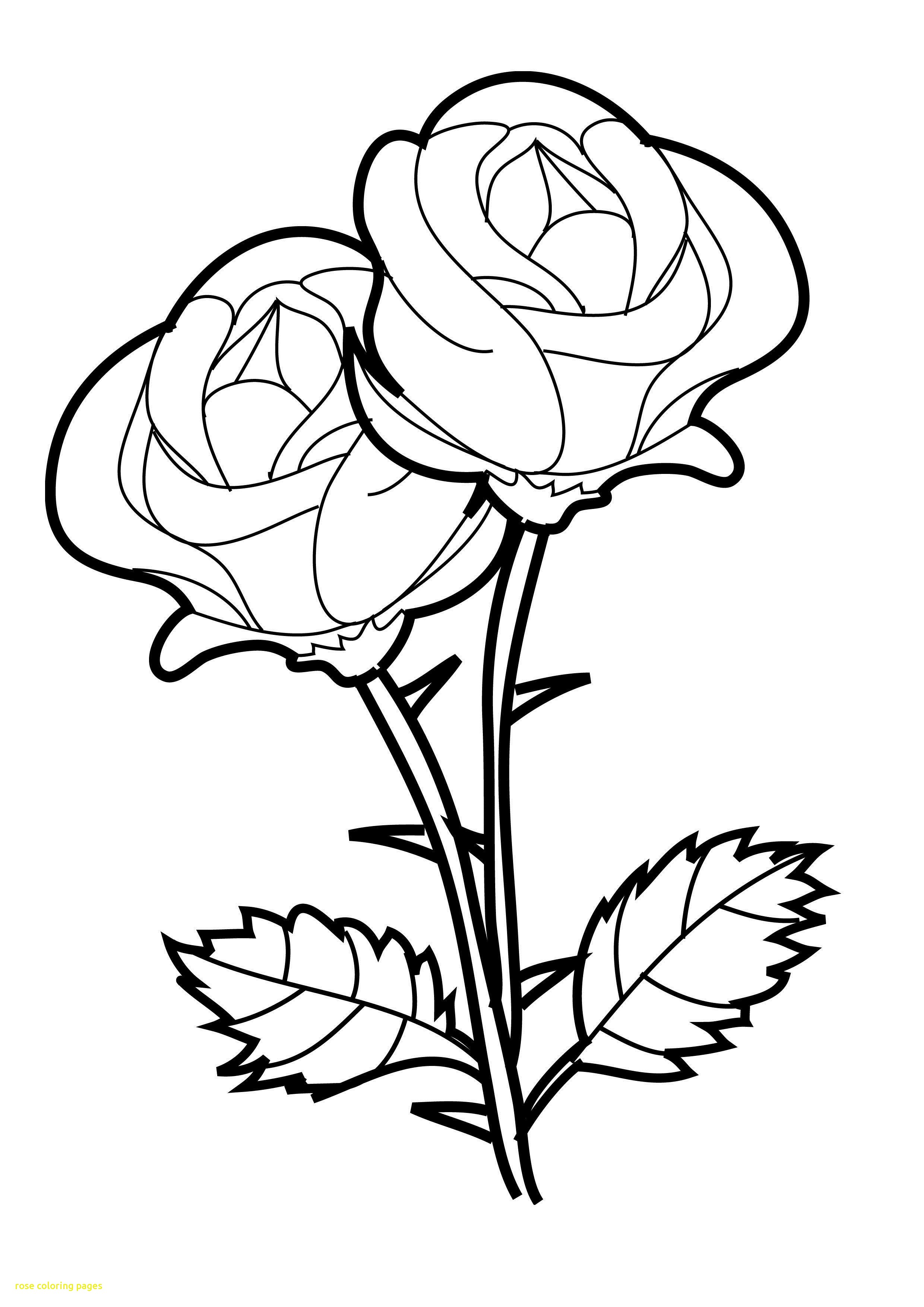 2480x3508 Rose Coloring Pages Free Printable Roses On Birdhouse