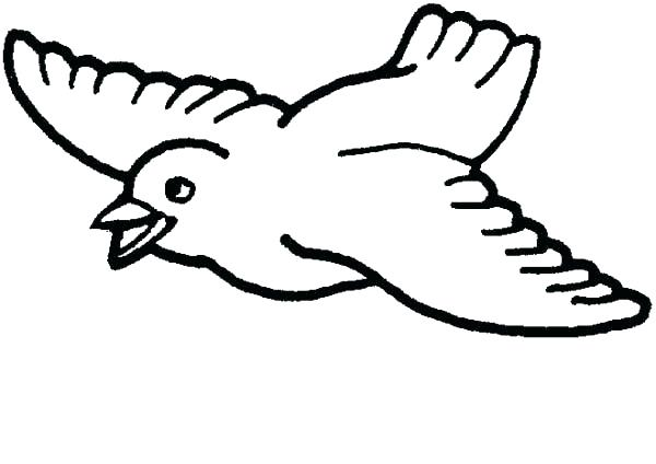 600x424 Coloring Page Bird