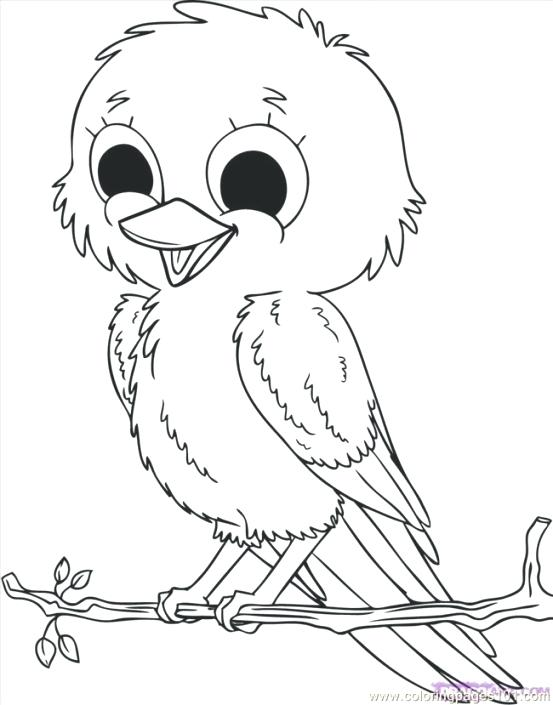 553x705 Bird Coloring Pages Adults X Birdhouse Coloring Pages