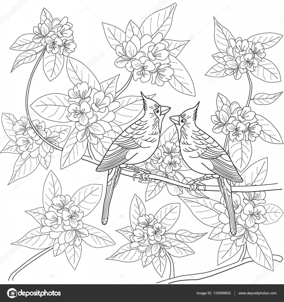 963x1024 Coloring Page For Adults With Birds And Flowers Stock Vector