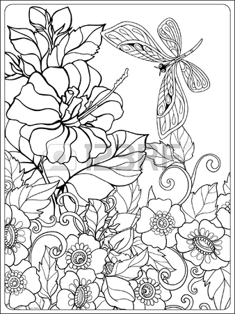 338x450 Decorative Flowers And Birds. Coloring Book For Adult And Older
