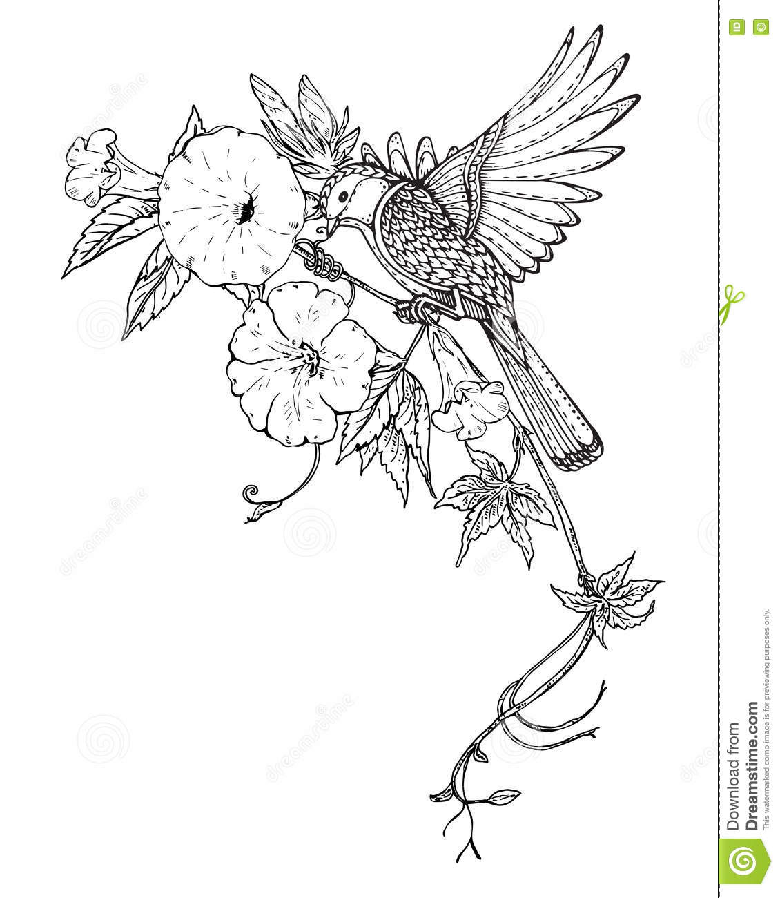 1130x1300 Drawn Bird Flower
