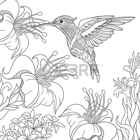 450x450 Hummingbird Bird Nectar Flower. Hummingbird And Lily Hand Drawing