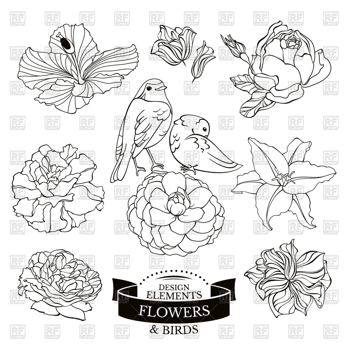 1200x1200 Outline Of Flowers And Birds Royalty Free Vector Clip Art Image
