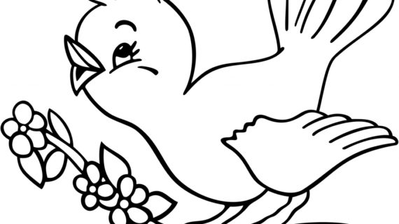 570x320 Drawings Of Birds Drawing Of Birds Flying Clipart Best