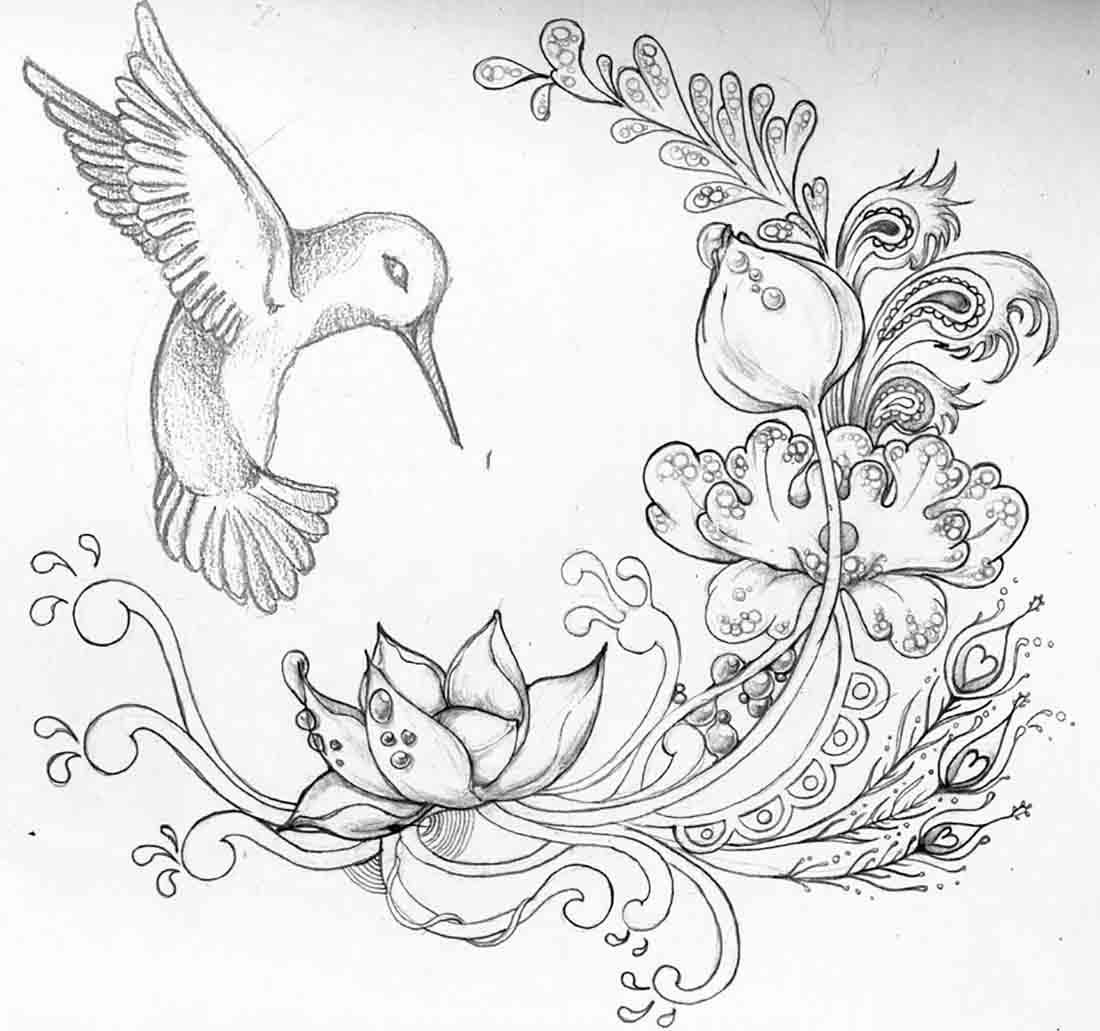 1100x1031 Drawn Bird Flower