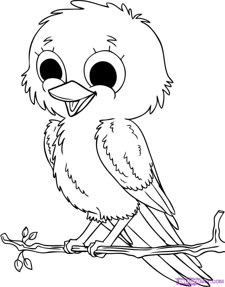 900x1148 Bird Drawing Cartoon 8. How To Draw Baby Birds