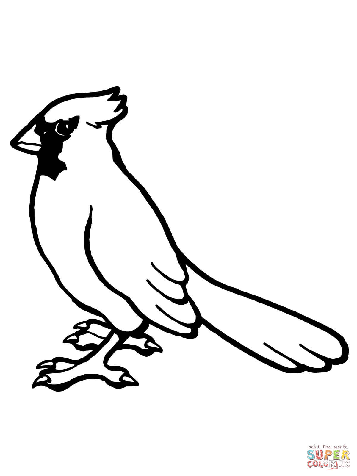 1200x1600 Northern Cardinal Coloring Pages Free