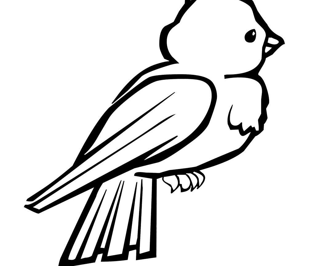 1024x864 Birds Coloring Pages For Preschool Printable Page Of Free Animals