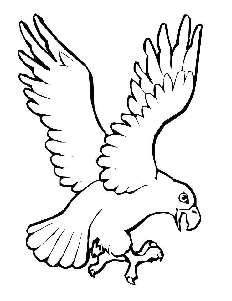 741x960 Coloring Pages For Kids Birds Bird Outline Drawing Library Free