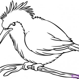 320x320 Tag For How To Draw A Bird Goose Draw A Heron. How To Bird By