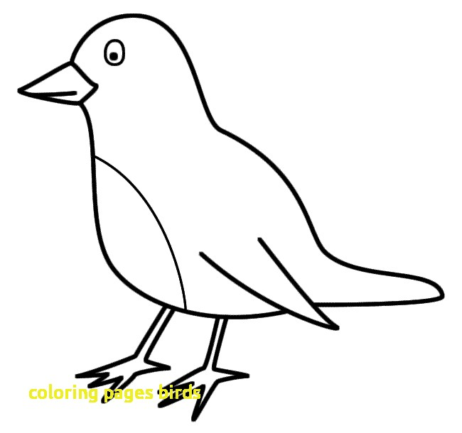 650x610 Coloring Pages Birds With How To Draw Birds And Colouring Pages
