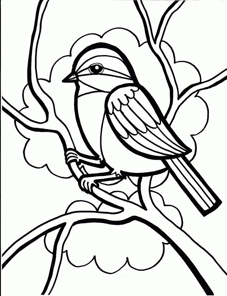 736x957 Coloring Pages For Girls Birds Colouring To Good Print Draw
