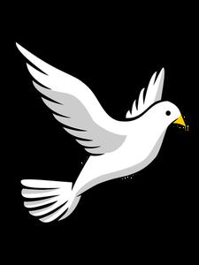 Birds In Flight Drawing