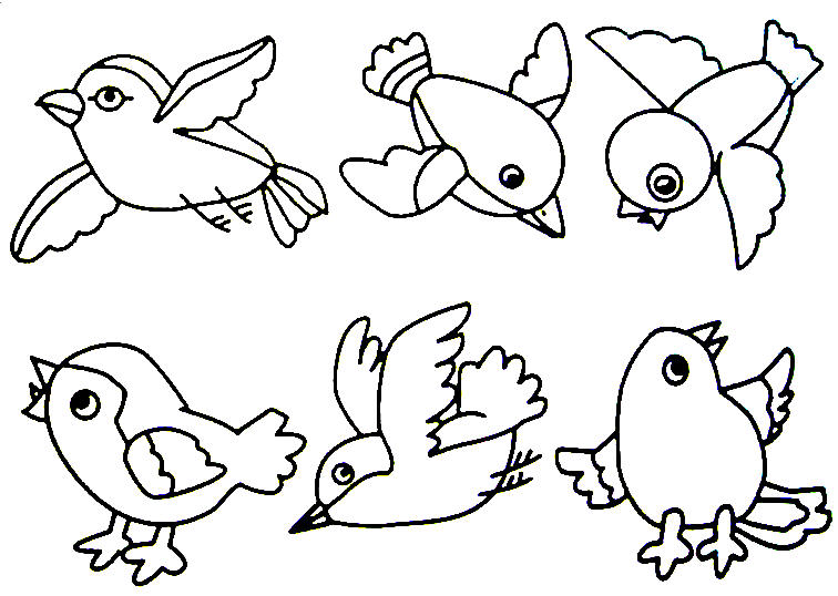 756x538 Coloring Pages Of Birds Printable For Kids